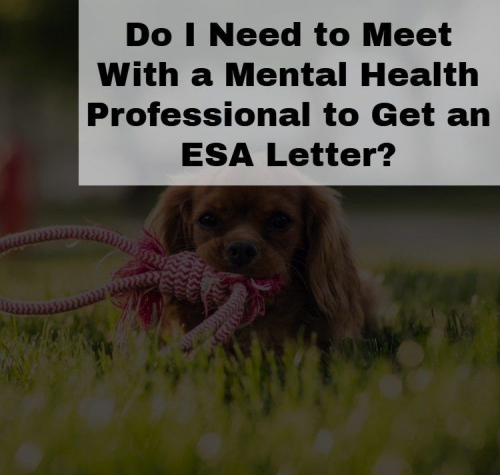Emotional Support Animal Letter from a Mental Health Professional