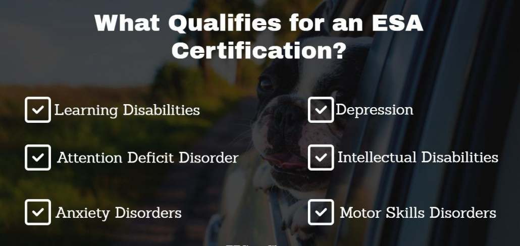 What Qualifies for ESA Certification
