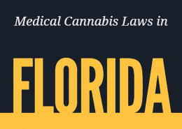Medical Cannabis Laws in Florida