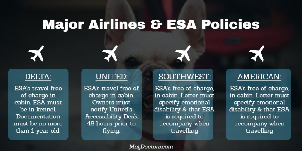 Major Airlines & ESA Policies - Miami, Fl