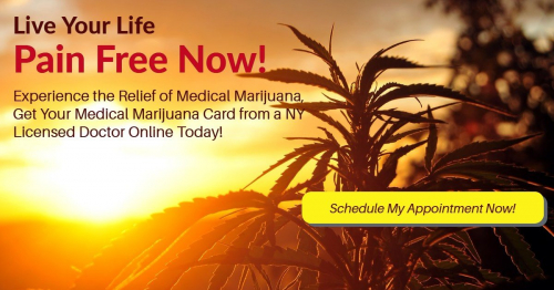 Online Medical Marijuana Card New York Appointment
