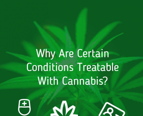 Why Are Certain Conditions Treatable With Cannabis (1)