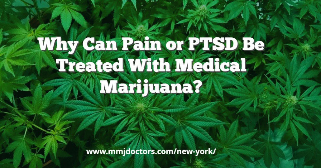 Why can Pain or PTSD be treated with Medical Marijuana?