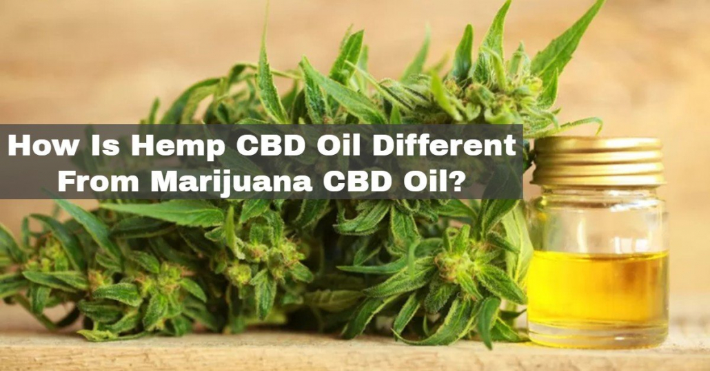 How Is Hemp CBD Oil Different From Marijuana CBD Oil