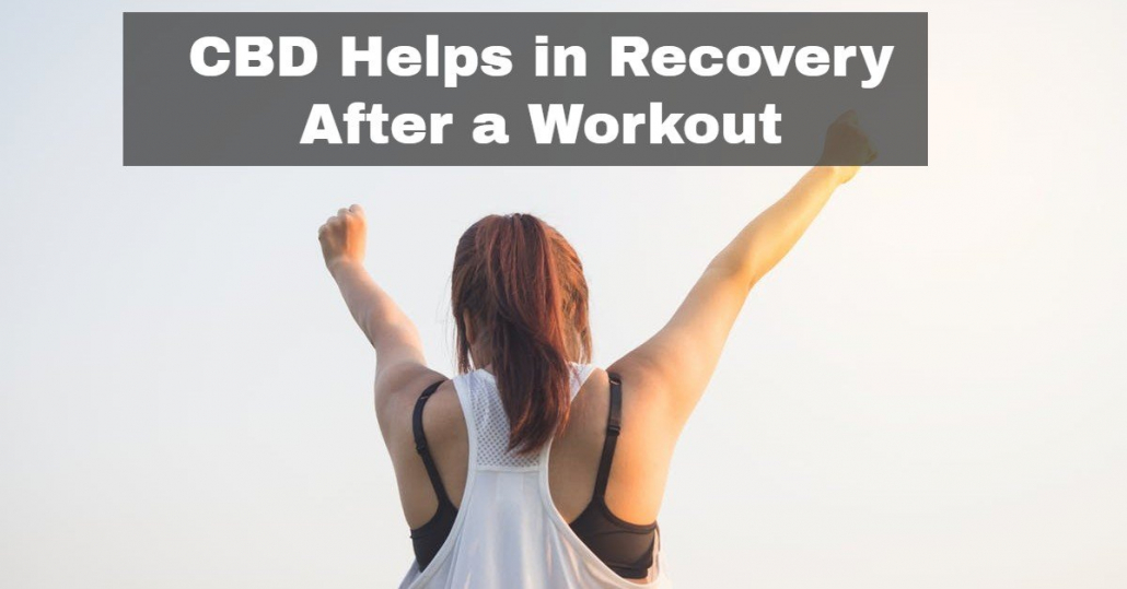 CBD Helps in Recovery After a Workout