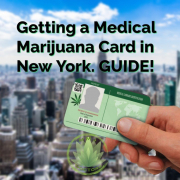 New York Medical Marijuana Guide