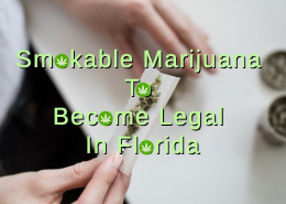 Marijuana Flower To Be Legalized In Florida