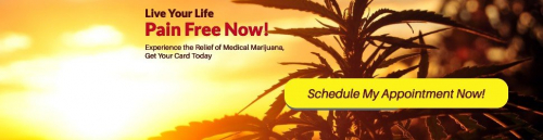 Schedule an appointment with a qualified marijuana doctor today