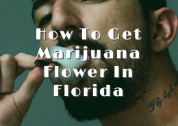 How To Get Marijuana Flower In Florida