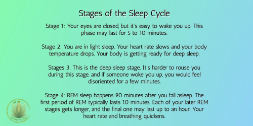 Stages of the Sleep Cycle