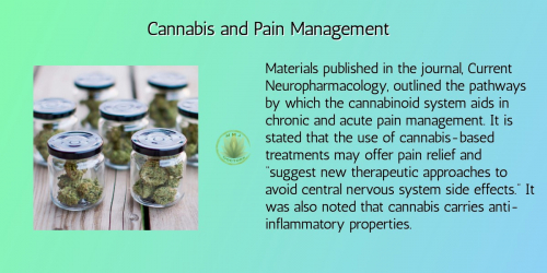 Medical Marijuana and Pain Management