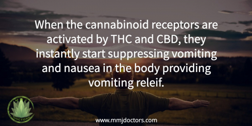 nausea and medical marijuana