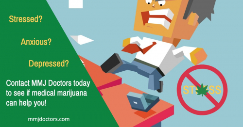 Medical Marijuana and Stress