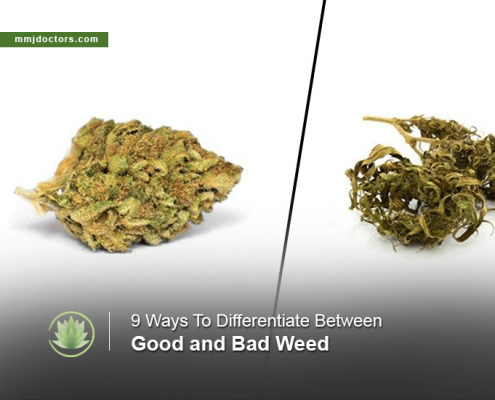 Good Weed vs Bad Weed